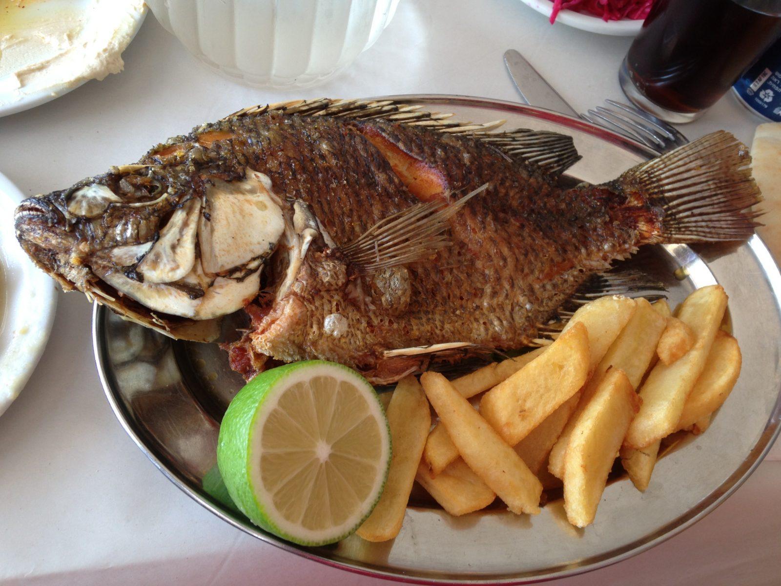 Gegrillter Petrusfisch in einem Restaurant am See Gennesaret