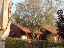 Kibbuzgästehaus Ein Harod Lodge