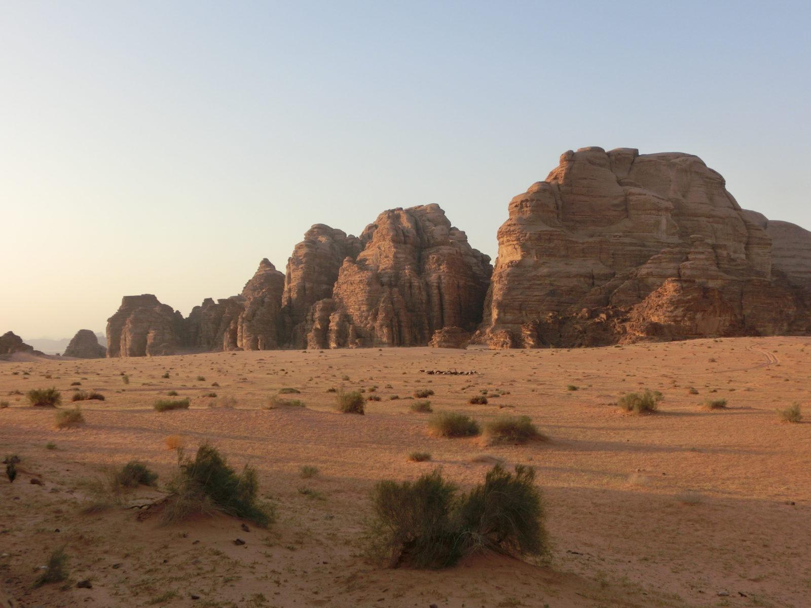 Wüstenlandschaft im Abendlicht