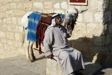 Begegnungen in der Jerusalemer Altstadt