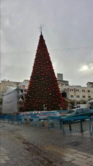 Weihnachtsbaum in Betlehem