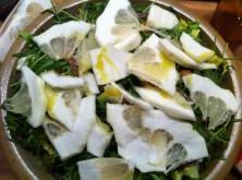Cedro-Salat mit Rucola