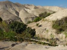 Blick ins Wadi Qelt