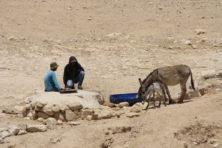 Hirten tränken ihre Tiere
