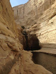 Nationalpark Avdat