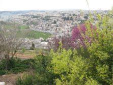 Blick vom Skopusberg auf Jerusalem
