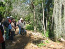Führung mit Michael Avishai im botanischen Garten