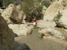 Unterwegs im Wadi David