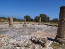 """Die """"ungeschützten"""" Mosaike der Trias Basilica"""