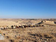 Jordanien – Biblisch-spirituelle Studienreise in schwierigen Reisezeiten